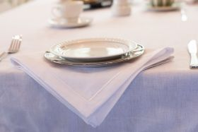 NAPKIN EMBROIDERED COTN-LIN